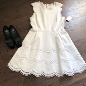 NWT- Ted Baker London Dress
